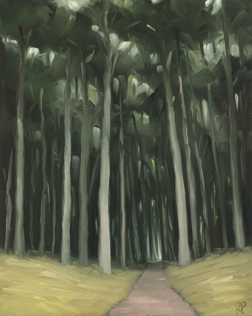 study 18-101 Cypress Forest 10x8s painted by Canadian Landscape Artist Ross Penhall