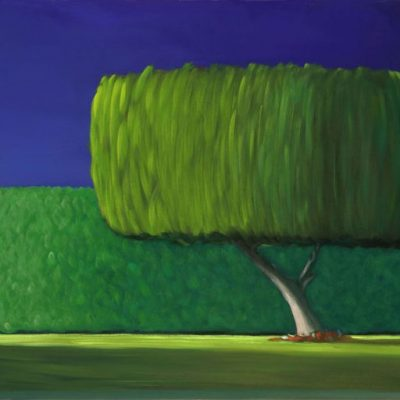 20-17 Ficus Tree 18x40 oil on canvas