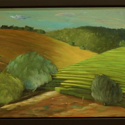 Valley-Above-Napa-8x10-2020-op-Study
